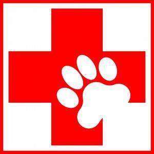 Ветеринарна аптечка для кішки