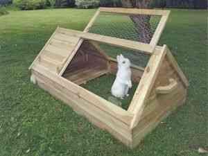 Розведення кролів не вимагає особливих фінансових затрат. У кожному господарстві можна знайти всі необхідні матеріали для того, щоб створити тваринам ...