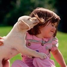 Вибір собаки для дитини, ідеальні породи для дітей