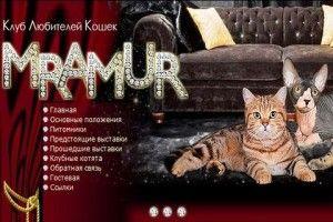 Фото з виставки кішок
