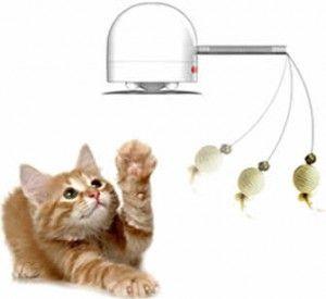 кумедна іграшка для кішок