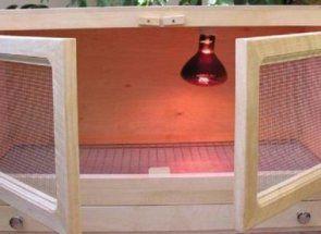 Житло для самих маленьких: майструємо клітку для курчат