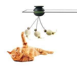 Жива іграшка для кішки