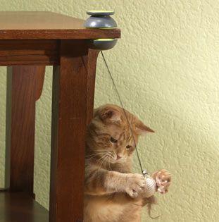 Іграшка для кішок FroliCat